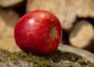 L'alimento del giorno: la mela
