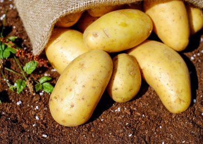l'alimento del giorno: le patate